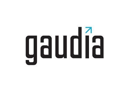 CONVENIO FOE - GAUDIA CONSULTING
